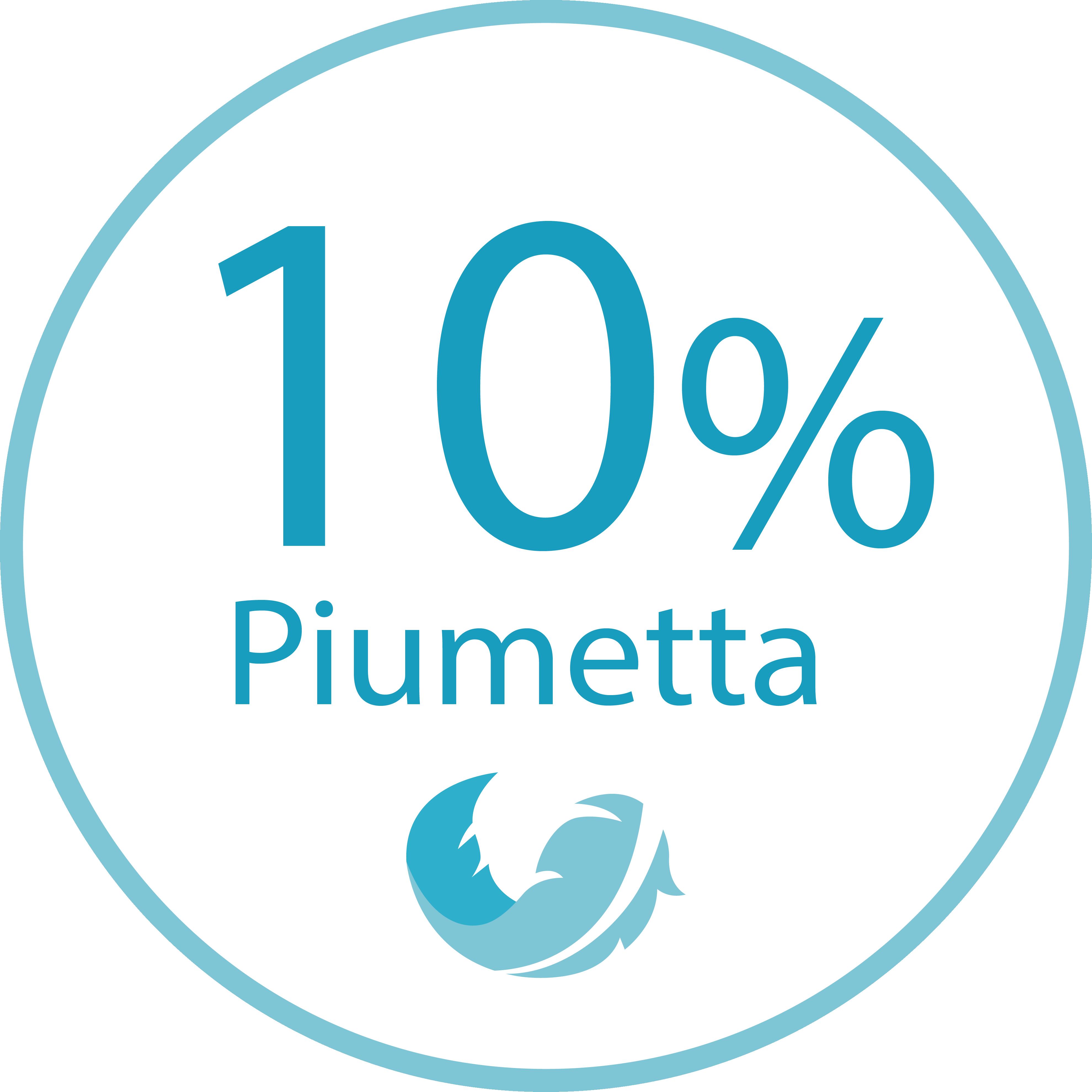 24156c5fe6 Piumissimo Piumino Desiderio P20 365 Giorni - 90% Piumino